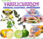 trigliceridos